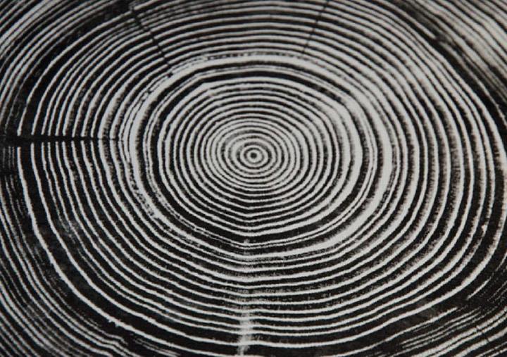 Rings Stool by Nao Tamura for Artek