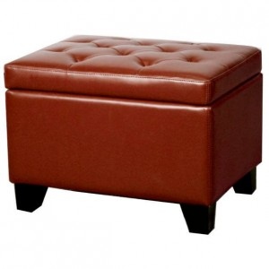 Julian Rectangular Bonded Leather Storage Ottoman, Pomegranate by NPD (New Pacific Direct)