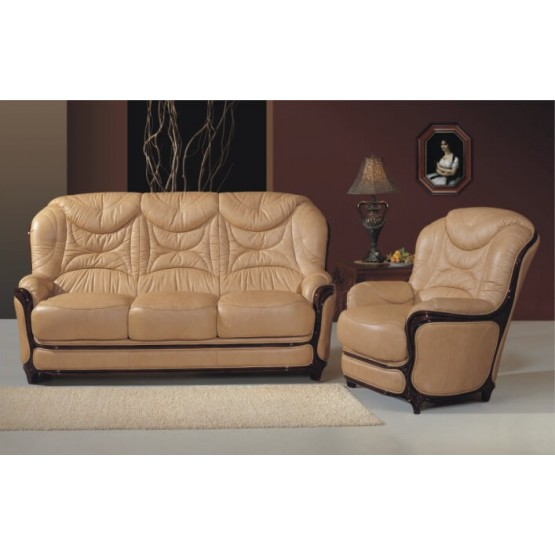 A68 Full Leather Living Room Set photo