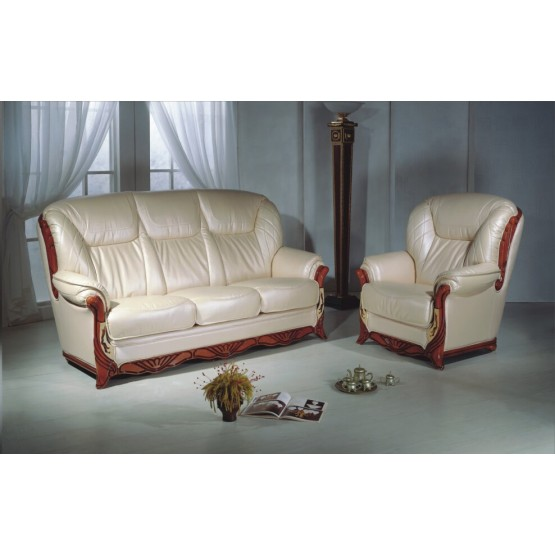 B167 Half Leather Living Room Set photo