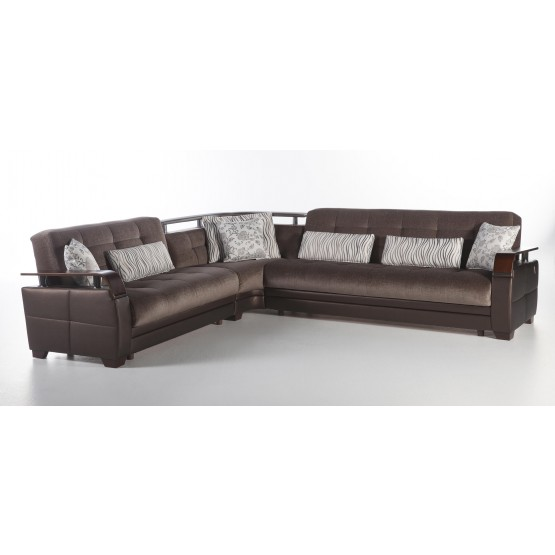 Natural Sectional photo