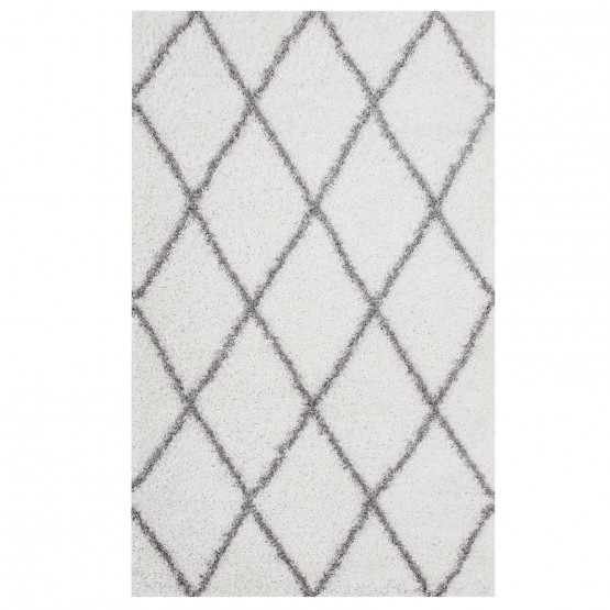 Toryn Diamond Lattice Shag 5' x 8' Rug photo