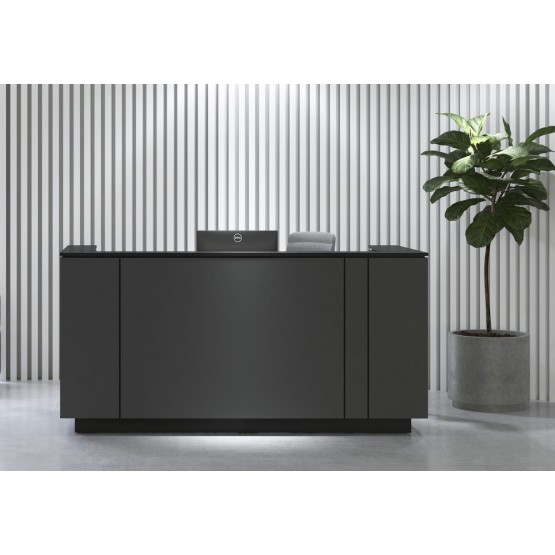 ICE Office Reception Unit for 1 Working Place (without desk) photo