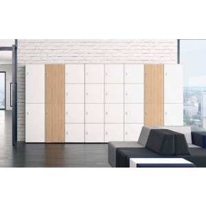 Choice Locker Customizable Cabinet System w/Cylinder Lock with Retention (AP)