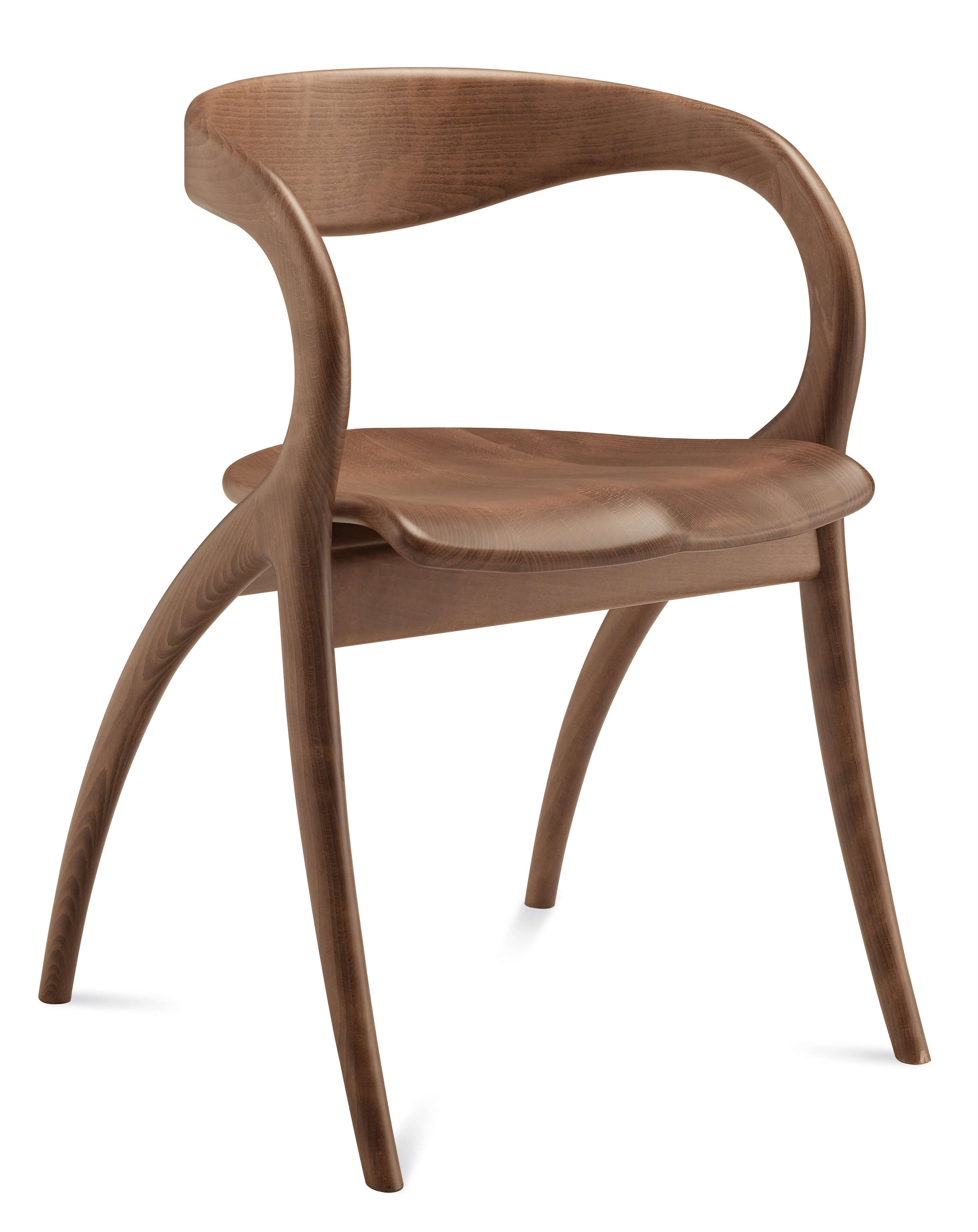 Star Dining Chair By DomItalia, Italy Buy Online At Best Price   SohoMod