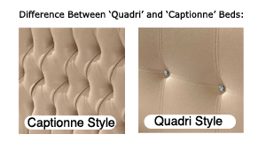 Difference between 'Quadri' and 'Captionne' Styles